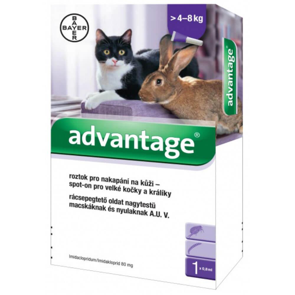 ADVANTAGE pro velké kočky a králíky spot-on 1x0.8 ml