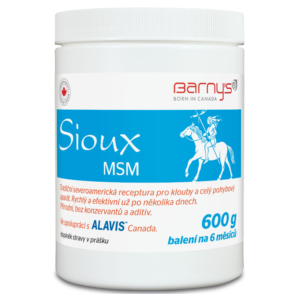 BARNY'S Sioux MSM 600 g