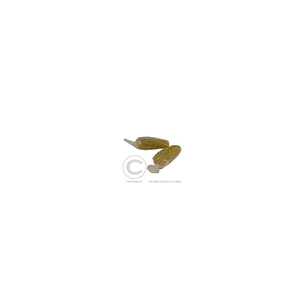 DETECHA Chránič sluchu Plastifon-velký 1pár