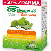 GS Ginkgo 40 + Gotu kola 40+20 tablet