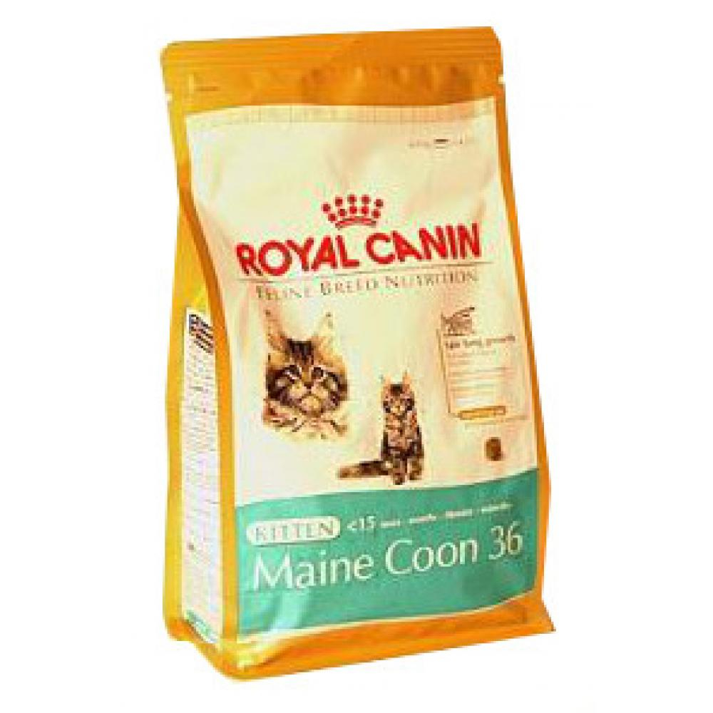 Royal canin Breed Feline Kitten Maine Coon 400 g