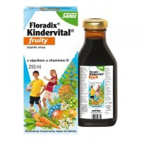 SALUS Floradix Kindervital Fruity 250 ml