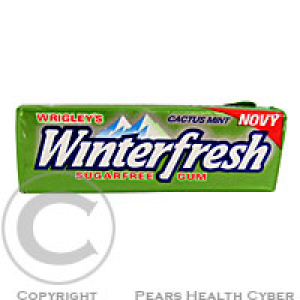 WRIGLEYS Winterfresh Cactus Mint dražé 10ks